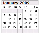 Events Calender January 2009 New York City