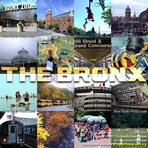 What to see in bronx New York City