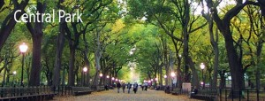 central park top 10 must see attractions new york